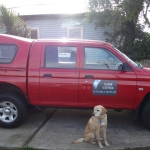 Christchurch Electricians, Elusion Electrical.